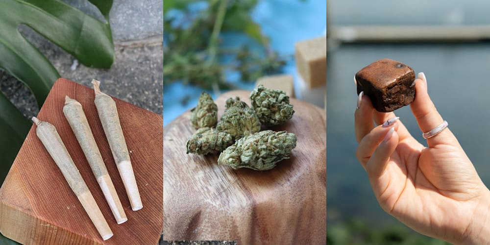 Cannabis Consumption Methods: Formats & Ways to Use Cannabis