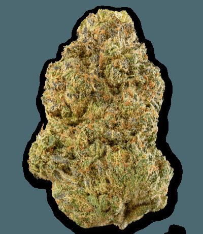 Namaste DM2 Cannabis Dried Flower - Bud Closeup
