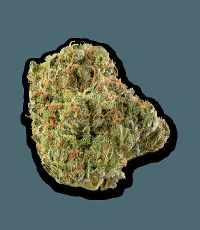 Namaste Shishkaberry Cannabis Dried Flower - Bud Closeup