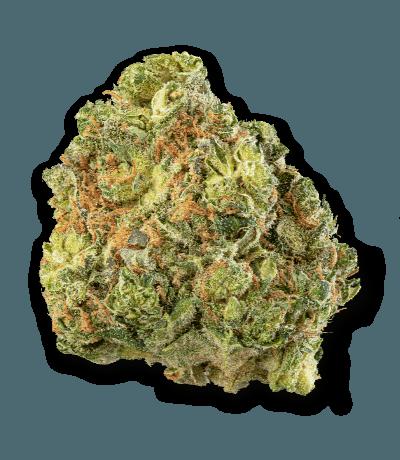 Namaste Wappa Cannabis Dried Flower - Bud Closeup