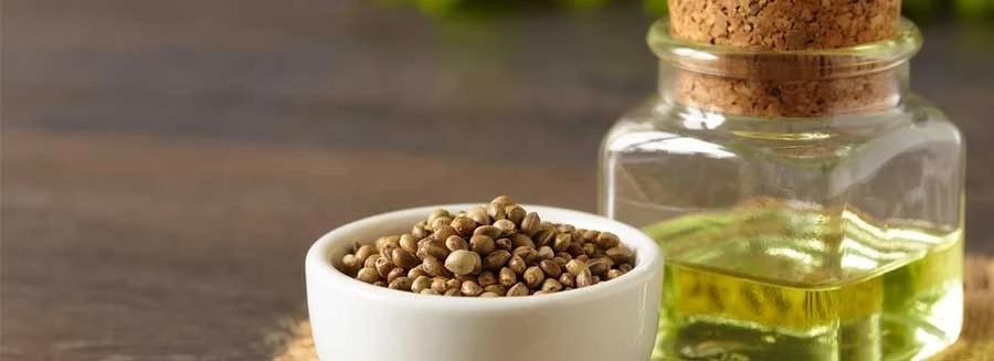 Where Can I Buy Hemp Seed Oil?