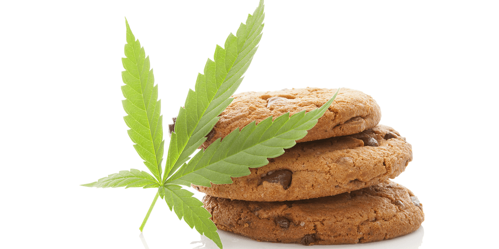 Everything You Wanted to Know About Edibles but Were Too High to Ask