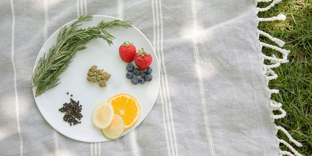 How to Pair Food with Cannabis Terpenes